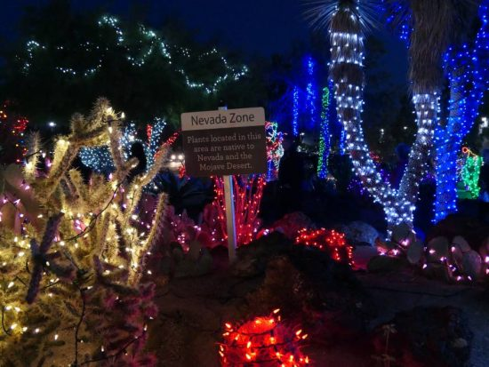 Lichtshow Ethel M Botanical Cactus Garden in Henderson