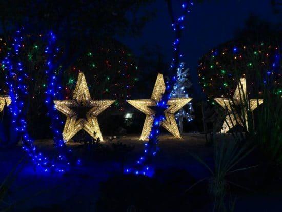 Kerststerren Ethel M Botanical Cactus Garden